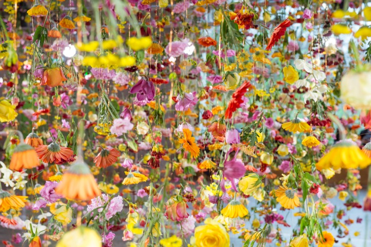 Garten by Rebecca Louise Law