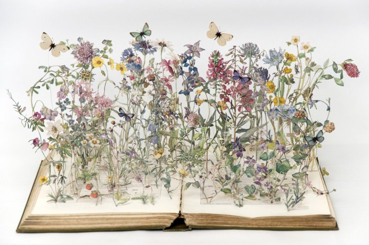 Wild Flowers of the British Isles by Su Blackwell