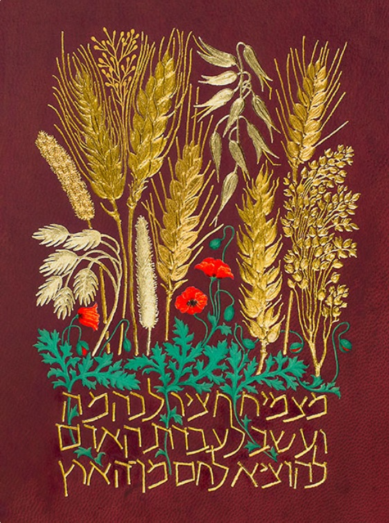 To Bring Forth Bread by Barbara Wolff