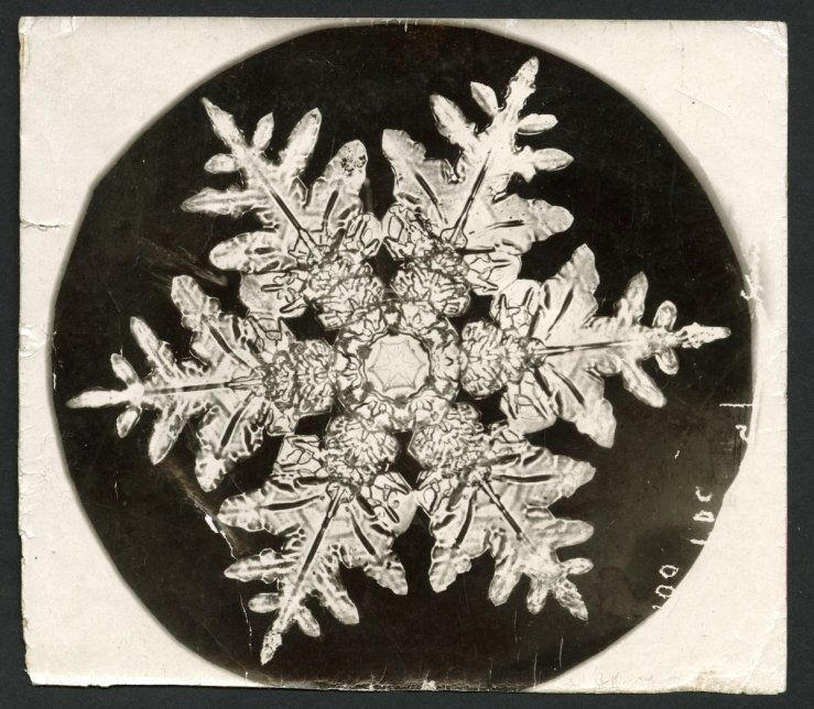 Snowflake photo by Wilson Bentley