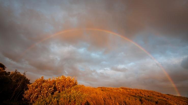Rainbow, (c) Ian Ferguson