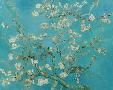 van Gogh, Vincent_Blossoming Almond Tree
