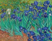 van Gogh, Vincent_Irises