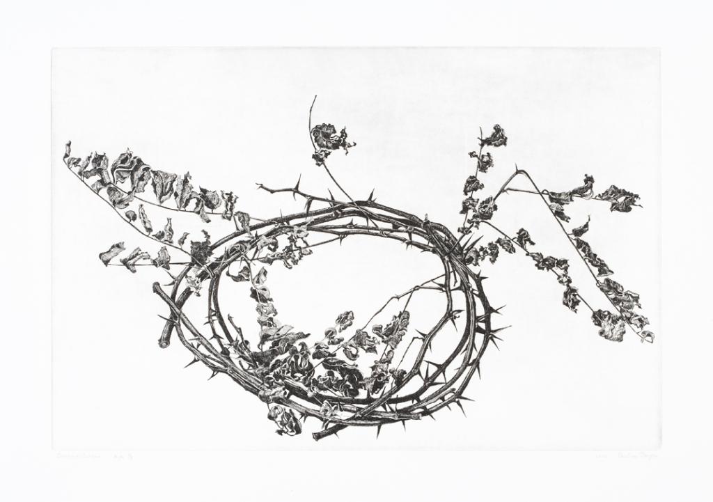 Dongen, Paul van_Crown of Thorns (2)