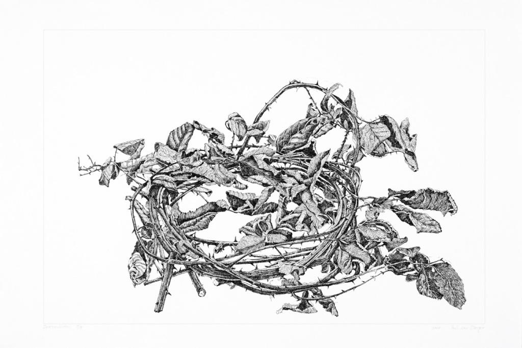 Dongen, Paul van_Crown of Thorns (3)